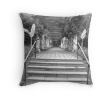 Another pathway Throw Pillow