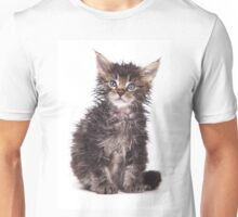 Wet and angry kitten Unisex T-Shirt