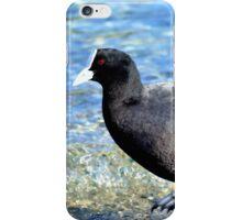 Not Quite An All Black! - NZ Coot iPhone Case/Skin