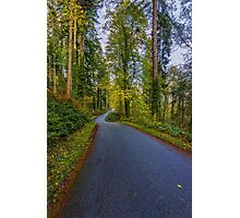 Road To Freedom Photographic Print