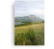 View from Middle Waterton Lake Metal Print