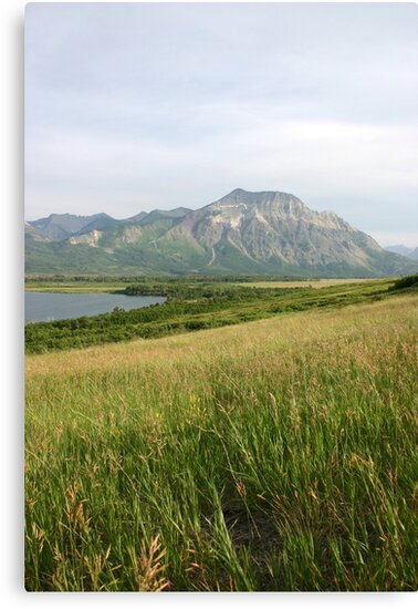 View from Middle Waterton Lake by Alyce Taylor