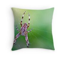 Great Spider Throw Pillow