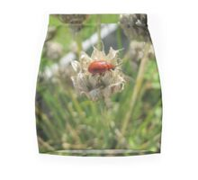 Beetle climbing on a dried chives flower Pencil Skirt