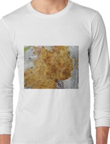 Leaves in ice that never comes again Long Sleeve T-Shirt