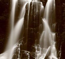 Wes Beckett falls Tarkine region , Tasmania , Australia by phillip wise