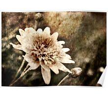 Flower Grunge Poster