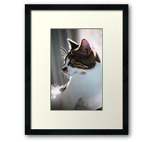 Halo Framed Print