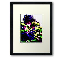 Coloured Foliage Framed Print