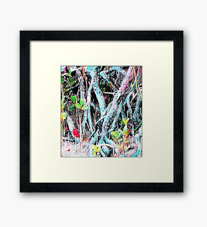 Mangrove Beginnings Framed Print