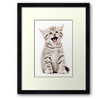 Striped British kitten meows Framed Print