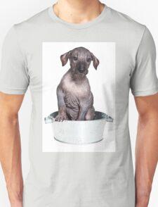 Hairless Dog puppy T-Shirt