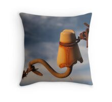 Insulated Throw Pillow
