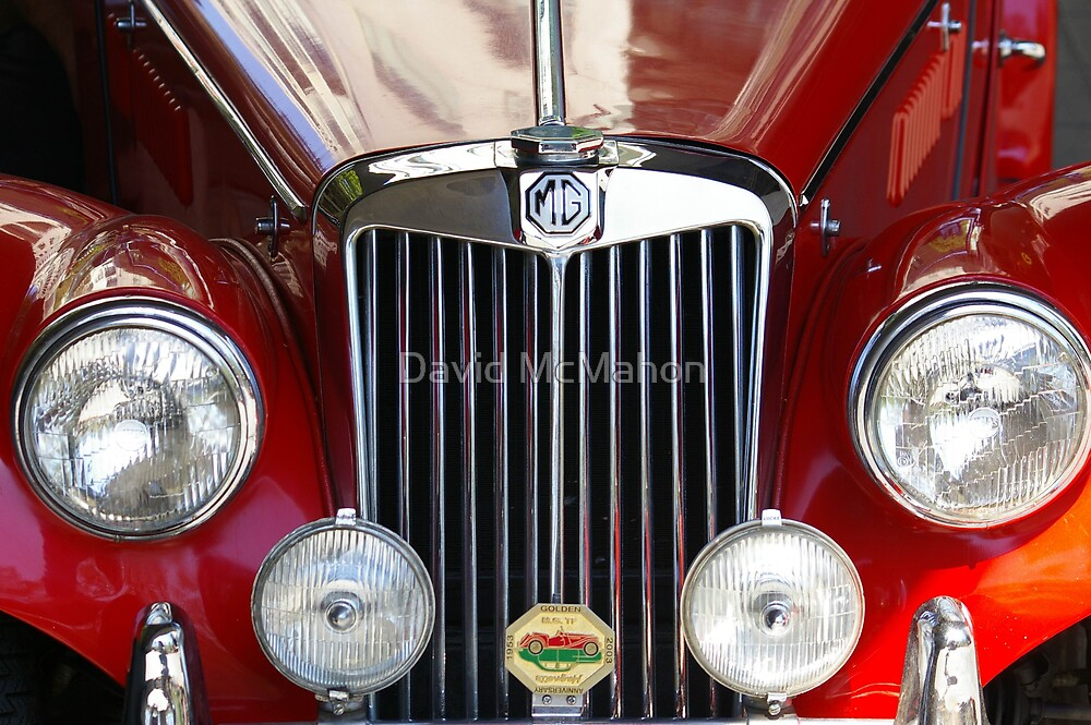 Grille Power (Just Like The Spice Girls Said!) by David McMahon