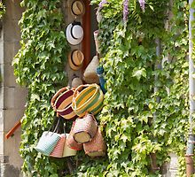 Hats and Bags by Elaine Teague