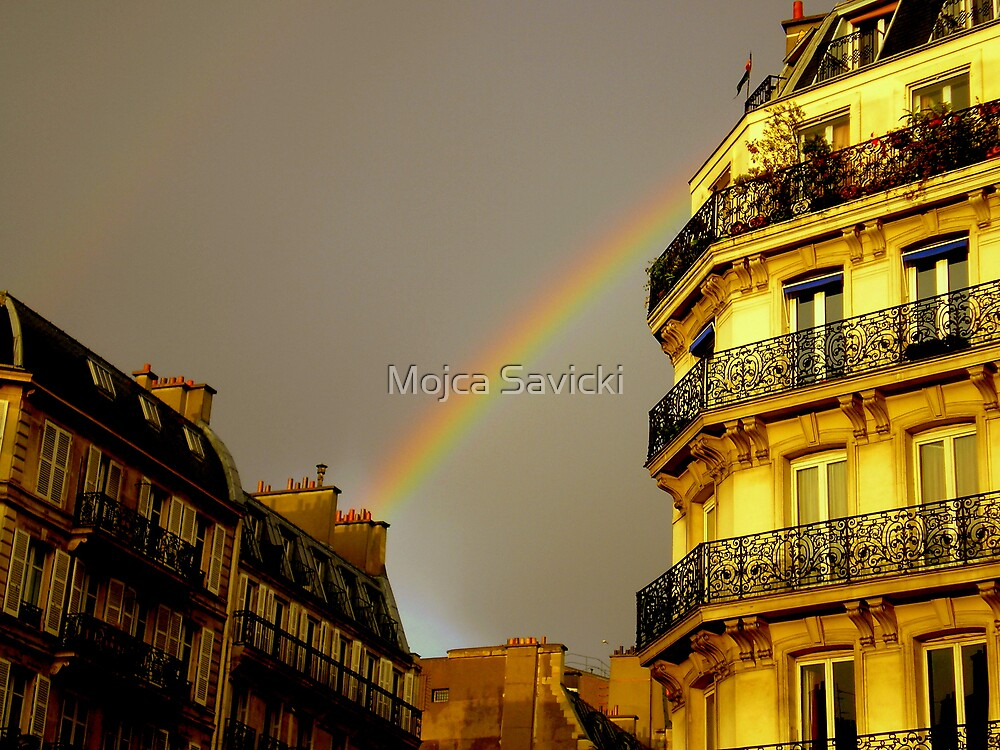 Fall in Paris by Mojca Savicki