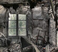 13.8.2009: Years of Destruction by Petri Volanen