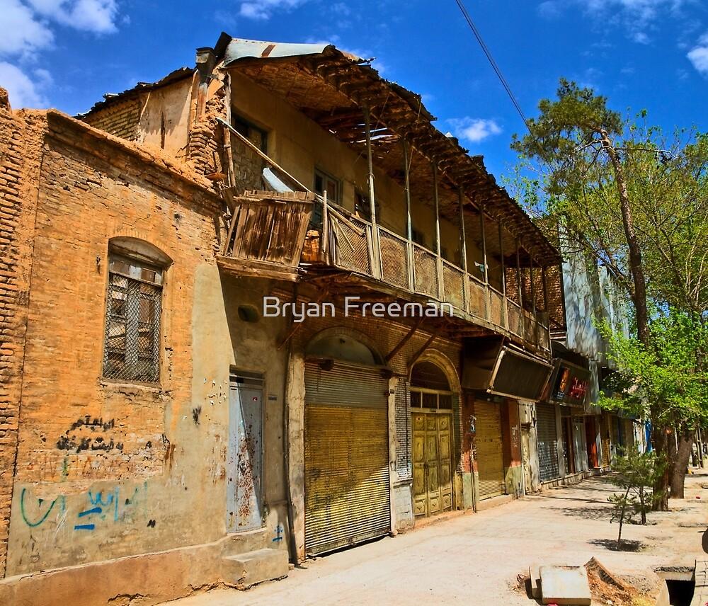 Fall From Grace - Shiraz - Iran by Bryan Freeman