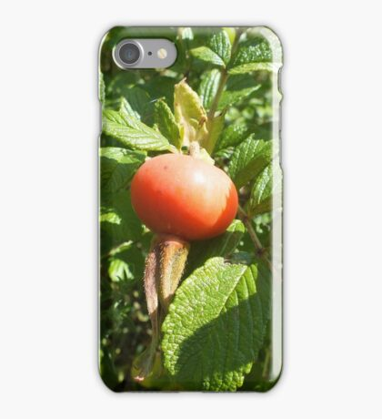 After The Rose Has Gone. iPhone Case/Skin