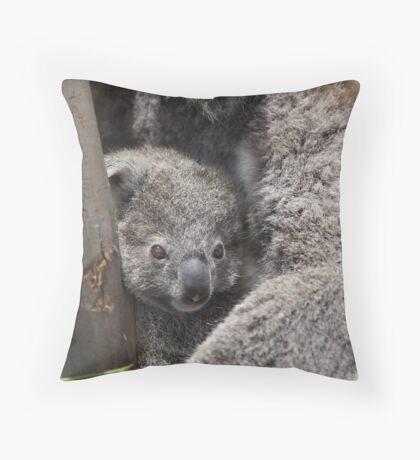 Koala's Throw Pillow