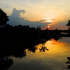 Placencia Sunset  by Robert Case