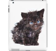 Black wet kitten iPad Case/Skin