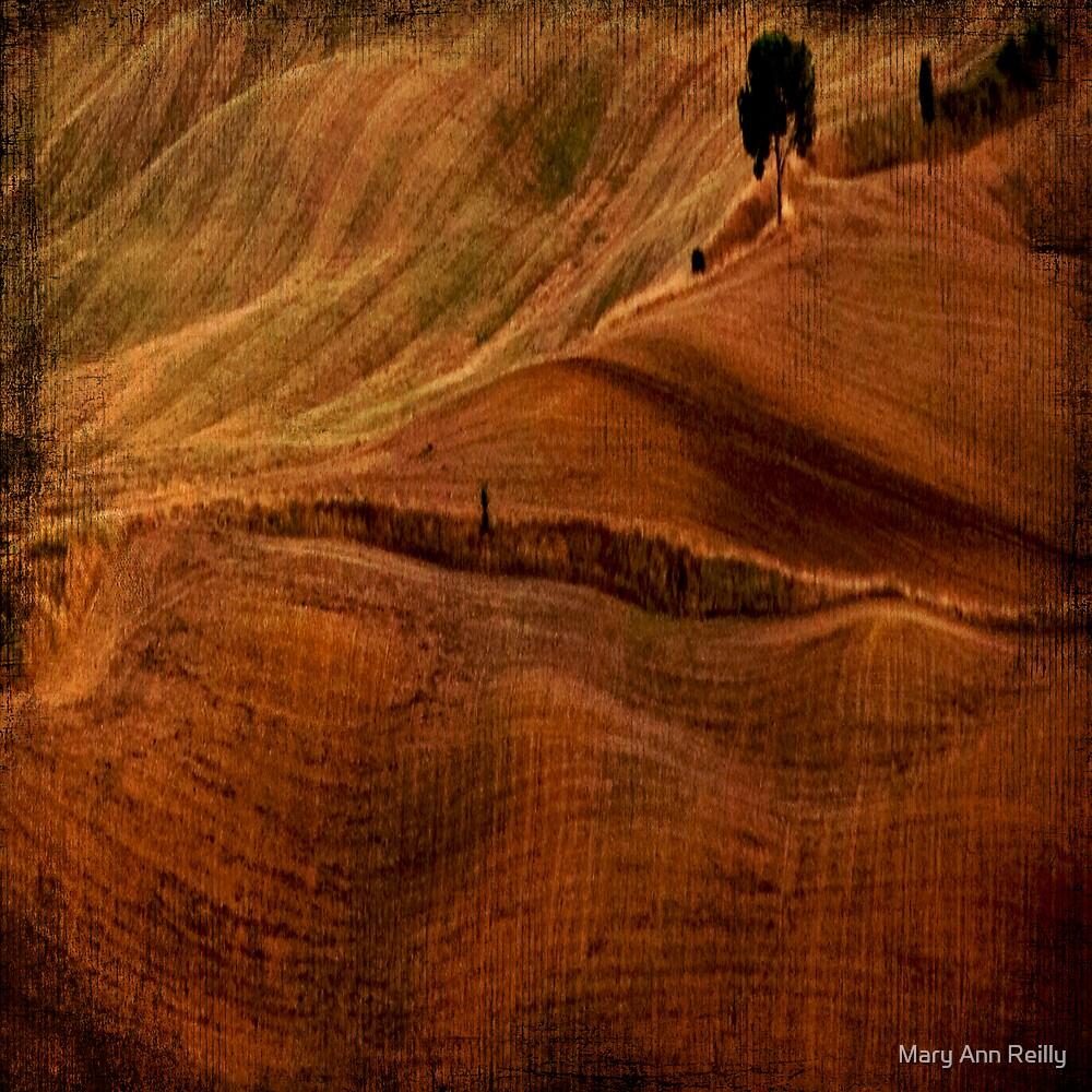 Undualting, II by Mary Ann Reilly