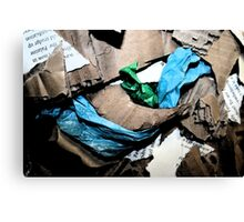 recycled mania Canvas Print