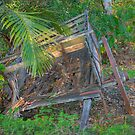 The Old Cart, Hervey Bay, Queensland, Australia by Adrian Paul