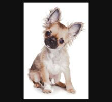 chihuahua puppy Kids Clothes