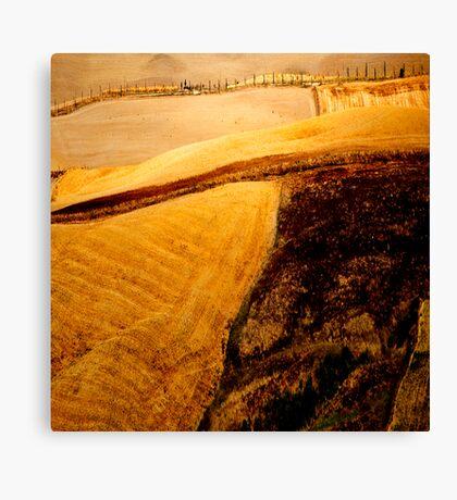 ...The Color of a Dream I Had Canvas Print