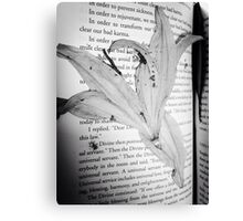 Dead flowers pressed into book  Canvas Print