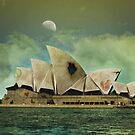 Sydney by Paige Hally