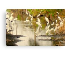 Storks and Egrets Watercolor: Survival   Canvas Print