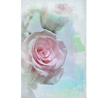 Watercolour Rose Photographic Print
