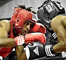 Boxing by Stephen Permezel