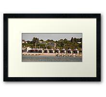 Jaws' Cabanas Framed Print