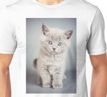 cute fluffy grey kitten Unisex T-Shirt