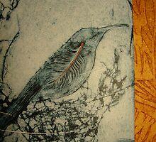 Eastern Spine Bill by jobanana