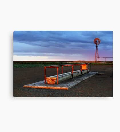 Cattle Trough - Hay Plains Canvas Print