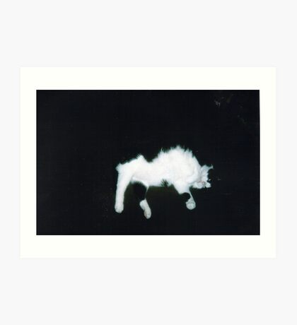 Spectral Cat Art Print
