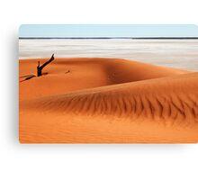 Dune and Salt Lake1 Canvas Print