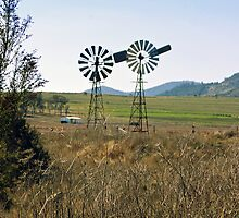 Windmills by two by Michelle Fluri