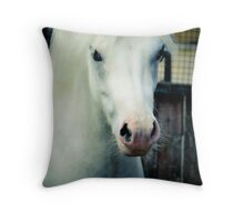 Smarty Throw Pillow