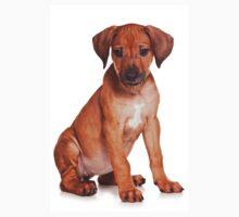 red ridgeback puppy Kids Tee