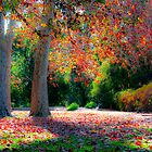 Autumn by Andrew Dickman