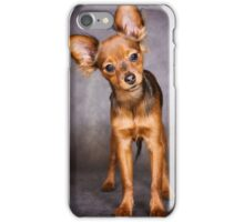 red toy terrier puppy iPhone Case/Skin