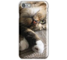 Upside Down Cat iPhone Case/Skin