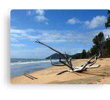 Bramstone Beach Qld Canvas Print