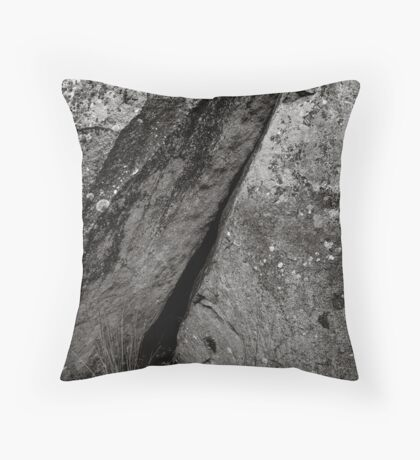 Mushroom Rocks Throw Pillow